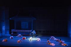 20170526 粉墨春秋-2 (fengchi860602) Tags: nationtheater 布鲁塞尔 欧洲 比利时