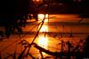 Wyspy Zawadowskie (Foto & Urban Art) Tags: wyspy zawadowskie rezerwat wisła józefów zachód słońca wiosna