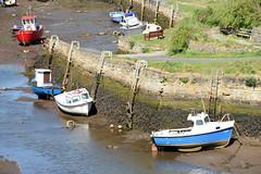 Seaton Sluice boats at low tide (DavidWF2009) Tags: northumberland seatonsluice lowtide boats fishingboats harbour