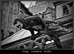 Gargoyles - 7 (fotomänni) Tags: prag praha prague veitsdom gargoyles wasserspeier steinfiguren skulpturen skulptur sculpture kunst schwarzweis blackwhite noirblanc gargouille manfredweis