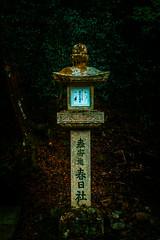 Idle (Luis Montemayor) Tags: japan japon kasuga taisha kasugataisha kasugagrandshrine grand shrine stonelantern lantern linterna forest bosque nara