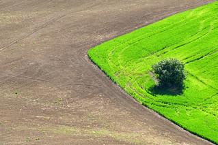 Rural geometry