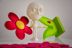 """Day 158/365 - """"Something funny"""" (Little_squirrel) Tags: 365the2017edition 3652017 day158365 7jun17 somethingfunny funny meme memes composition facialexpression expression hilarious flower colors emotion face bright"""
