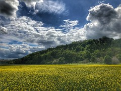 Mountainbike Tour über die schwäbische Alb Teil zwei (Blende2,8) Tags: schwabenland iphone deutschland blüten badenwürttemberg reutlingen wolken himmel bäume wald rapsfeld
