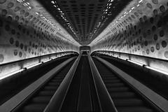 Escalator to the Music (laga2001) Tags: black white bw escalator building urban concert hall hamburg germany monochrome indoor