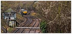 Crossing (Peter Leigh50) Tags: signal semaphore cabin box level crossing old mans beard train engine railway 66616 class 66 ketton