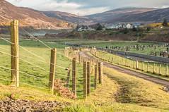 Helmsdale Village (Tomasz Urbaszek) Tags: scotland highlands photostrider phototrip nikon d90 primes travel journey landsape composition 50mm nikkor50g