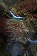 Ruta do Rio San Martiño (jojesari) Tags: ar117g 135 rutadoriosanmartiño meis pontevedra galicia otoño autunm jojesari suso