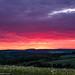 Sunset atmosphere in Heckengäu (Juergen|K) Tags: fujifilmxpro2 fujinonxf50f2 abendstimmung fuji23f2 sunset heckengäu fujinonxf35f2