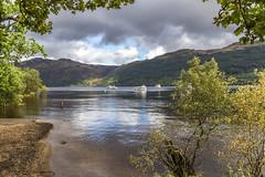 "Loch Lomand, Scotland (mandyhedley) Tags: loch lomand scotland lochlomand water ftrees trees clouds lochlomondisafreshwaterlochlyingonthehighlandboundaryfault itisthelargestbysurfaceareaandthesecondlargestafterlochnessbywatervolume ""flickrtravelaward"" ngc"