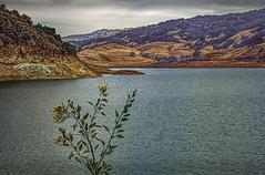 Beautiful Anderson Lake