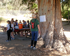 003 Course Setter's Notes Posted On A Tree (saschmitz_earthlink_net) Tags: 2017 california orienteering laoc losangelesorienteeringclub losangeles losangelescounty echopark elysianpark