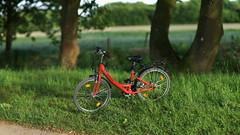 early summer evening light 3 (Amselchen) Tags: bokehpanorama bokeh blur dof depthoffield red green bicycle season earlysummer field sony alpha7 samyang 85mmf14