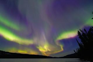 Aurora Borealis 8/15