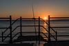DSF_2080.jpg (alfiow) Tags: fishingrod railings sunset totland