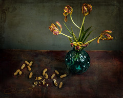 Peanuts and dried tulips (christina.todorov) Tags: peanuts tulips vase blue dry na nature mort texture