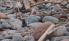 Black Brook Beach (elisecavicchi) Tags: ripple stone surface deformed driftwood weathered rope assemblage pastel granite rounded black brook beach coast cape shore breton highlands national park nova scotia canada related forms