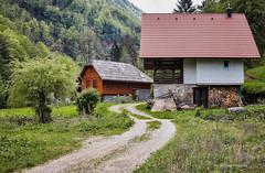 Iz zaseoka Kupari Srednji (MountMan Photo) Tags: kupari kuparisrednji rijekakupa gorskikotar primorskogoranska croatia voda landscape