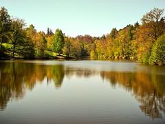 Bärensee (almresi1) Tags: lake stuttgart forest wald bäume trees water