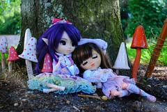 .: Victorine & Kelly :. (.: Miho :.) Tags: pullip pullipdoll pullipdolls doll dolls sister sisters obitsu groove groovedoll junplanning