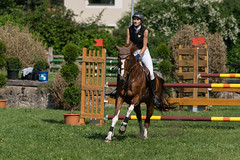 A9903213_s (AndiP66) Tags: springen langenthal bern 2017 juni june 3juni2017 pferd horse schweiz switzerland kantonbern cantonofbern concours wettbewerb horsejumping springreiten pferdespringen equestrian sports pferdesport sport martinameyer grueb mauensee luzern nevada sony alpha sonyalpha 99markii 99ii 99m2 a99ii ilca99m2 slta99ii sony70400mm f456 sony70400mmf456gssmii sal70400g2 amount andreaspeters pfingstspringen