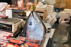Tsukiji fish market (Jennifer Lea) Tags: japan tokyo travel nikon sigma 30mm sugmaart colour tsukijifishmarket fish tuna