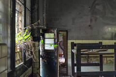 IMG_6758 (The Dying Light) Tags: abandonedasylum abandonedbuilding abandonedforesthaven foresthavenasylum foresthaven urbanexplorationphotography urbexphotography 2017 abandoned asylum canon decay urbex