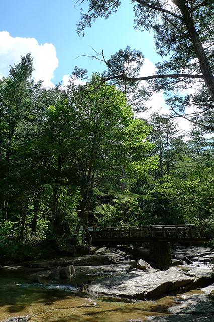 夏休みに信州・赤沢渓谷で森林鉄道&川遊び&魚のつかみ取りの写真