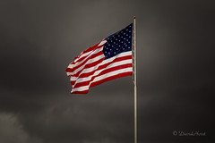 Flags of Freedom (david.horst.7) Tags: flag storm stormy usa unitedstates princeton illinois flagsoffreedom