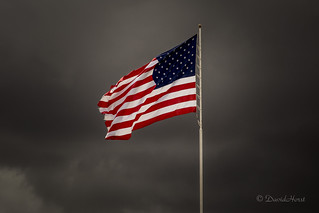 Flags of Freedom