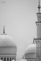 Sheikh Zayed Mosque (WLDLF   Adam Zdebel) Tags: sheikhzayedmosque nikonv1 ft1 n3004 abydhabi uae nikon v1