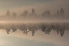 another world (zora_schaf) Tags: morgenstimmung morning kunst landscape natur see art surreal reflection spiegelung eisweiher mist fog nebel anotherworld