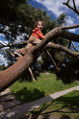 Sam Bournemouth-11.jpg (Reasonable Jim) Tags: bournemouth cassius southbourne climbing tree treeclimbing