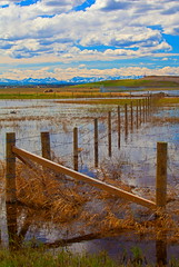 By and By (stevenbulman44) Tags: canon calgary alberta polarizer fence water cloud sky ranchland landscape