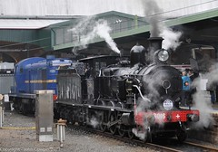 Transport Heritage Expo 2017 - 20 (john cowper) Tags: transportheritagensw centralrailwaystation transportheritageexpo heritagediesels nswrailmuseum 3642 3041 4001 mortuarystation entertainment queensbirthdayweekend sydney newsouthwales