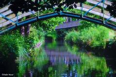 Reflet aux hortillonnages   (Explore 15/06/2017) (didier95) Tags: leshortillonages hortillonages amiens somme picardie hautsdefrance reflet pont riviere bleu vert