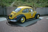 """Lucky Luke Beetle • <a style=""""font-size:0.8em;"""" href=""""http://www.flickr.com/photos/34093727@N05/35163971085/"""" target=""""_blank"""">View on Flickr</a>"""