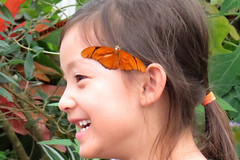 Butterfly on side of girl's head Conservatory of Flowers Victorian Greenhouse Butterflies and Blooms special exhibit San Francisco's Golden Gate Park 170606-163143 mcd C4 (Wambeke & Wambeke Photography, Art, & Textiles) Tags: cof cofspecialexhibit cofspecialexhibitsroom conservatoryofflowers victoriangreenhouse sanfrancisco goldengatepark people child girlsmiling juliabutterfly juliabutterflyongirlshair enjoyingthemoment portraitofface butterfly butterfliesandblooms butterfliesandbloomsspecialexhibit melodychandosswambekephoto melodydosswambekephoto melodydosswambekephotograph melodychandosswambekephotograph canonpowershotsx50photograph canonsx50photograph canonsx50photo wambekewambekephotographyarttextiles wambekewambeke wambekeandwambekephoto wambekeandwambekephotography wambekewambekephotographyquiltingspecialists