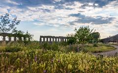 Aqueduct in Rome