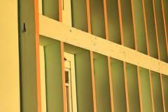 Structural yellow (abrinsky) Tags: india nagaland kohima tuophemavillage church