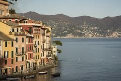 Portofino (Renato Pizzutti) Tags: liguria portofino case mare baia nikon renatopizzutti