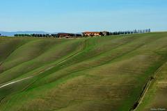 Onde in collina (Darea62) Tags: landscape tuscany hills cretesenesi nature panorama waves trees farm cypress farmhouse grass path road italy