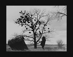 (emmakatka) Tags: blackandwhite emmakatka northdakota country sky silhouette figure woman portrait adventure alone surreal creepy dark eerie spooky