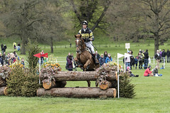 Chatsworth House International Horse Trials 2017 (johnhjic) Tags: johnhjic nikon horsetrials chatsworthhouse may 2017 fence fences jump jumps horse sport sports field equine chatsworth competition darbyshire equestrian action