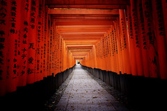 Fushimi Inari Taisha XXX (Douguerreotype) Tags: japan kyoto torii gate red vermilion buddhist temple shrine path