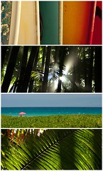 (Zebulon Dave) Tags: hawaii collage quadriptych polyptych surfboard rainbow honolulu oahu gometry widescreen waikikibeach bigisland hawaiitropicalbotanicalgarden papaikou palm tree leaf frond green diagonal backlit sunbather swimsuit red blue beach hapunabeachstatepark waimea hawaiicollageb