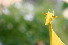 Giraffe ( origami ) (Adri 79) Tags: adrianodavanzo canon7dmarkii sigma105mmf28exdgoshsm paper origami giraffe genhagiwara