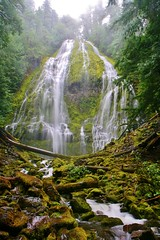 Sept 6, 2013 - Lower Proxy Falls, OR (25) (Dale Gerdes) Tags: oregon lower proxyfalls waterfall waterfalls