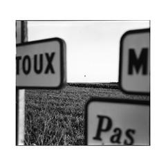 up there • bouze les beaune, burgundy • 2016 (lem's) Tags: mamiya universal press balloon hot air balon mongolfiere panneaux signs fields champs bouze beaune bourgogne burgundy