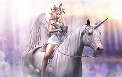 You are in safe now (meriluu17) Tags: jinx waterhorse horse unicorn bento angel wings wing heaven horn fawn animal ridding elf elven fairy fae lode people